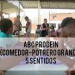 ABC Prodein